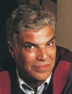 Ibrahim Abdel Meguid